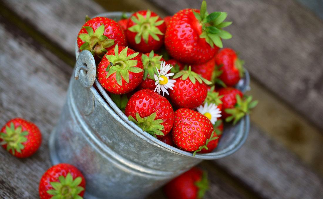 Vintage-Eimer prall gefüllt mit reifen Erdbeeren, drei Erdbeeren liegen daneben